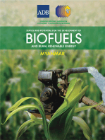 Status and Potential for the Development of Biofuels and Rural Renewable Energy: Myanmar