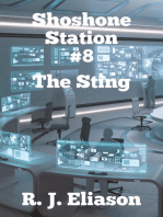 Shoshone Station #8
