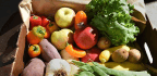 Organic Agriculture Can Help Feed World, but Only if We Eat Less Meat and Stop Wasting Food