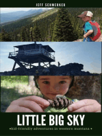 Little Big Sky
