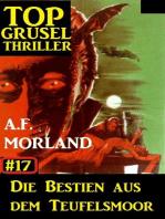 Top Grusel Thriller #17