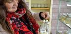 Czech Republic Creates Tuber For Health-Concious Purple-Potato Eaters