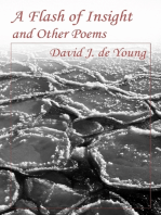 A Flash of Insight and Other Poems