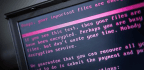 Government Outlines When It Will Disclose Or Exploit Software Vulnerabilities