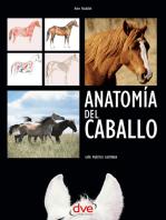 Anatomía del caballo: Guía práctica ilustrada