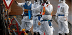 Risky Stalemate as Science Battles Human Fears at Fukushima