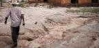 U.N. Body Alarmed Over Mining Waste Disasters