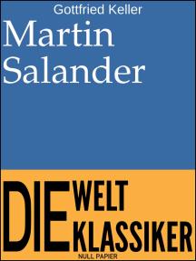 Martin Salander: Roman