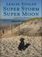 Super Storm Super Moon