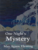 One Night's Mystery