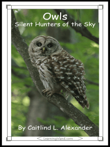Owls: Silent Hunters of the Sky