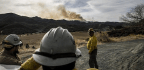 Good News From The Thomas Fire