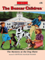 The Mystery at Dog Show