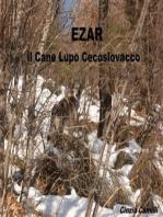 EZAR il Cane Lupo Cecoslovacco