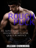 Rough Puck