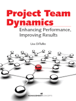 Project Team Dynamics