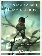 14 Fun Facts About Hummingbirds