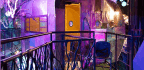 Immersion Art Startup Meow Wolf Picks Denver to Expand