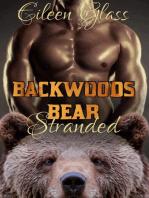 Backwoods Bear