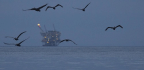 After Florida Gets Offshore Drilling Exemption, Other States Ask For The Same