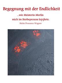 Begegnung mit der Endlichkeit: ...wie Meisterin Merlin mich im Sterbeprozess le(e)hrte