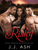 Risky MMF Bisexual Romance