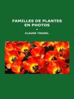 Familles de plantes en photos