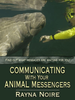 Communicating With Your Animal Messengers