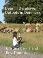 Deer in Dyrehaven - Outpets in Denmark