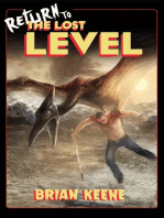 Return to the Lost Level