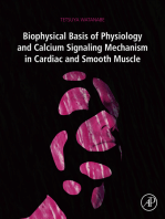 Biophysical Basis of Physiology and Calcium Signaling Mechanism in Cardiac and Smooth Muscle