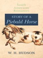 Story of a Piebald Horse (South American Romances)