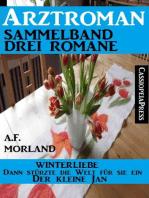 Arztroman Sammelband Drei Romane - Winterliebe/ Dann stürzte die Welt für sie ein / Der kleine Jan