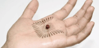 This Artificial Skin Can Sense Ladybug Footsteps