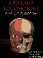 Apparato Locomotore - Anatomia Umana