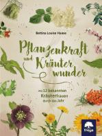 Pflanzenkraft und Kräuterwunder: Mit 12 bekannten Kräuterfrauen durch das Jahr