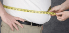 The Obesity Paradox Debunked