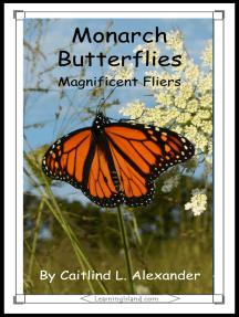 Monarch Butterflies: Magnificent Fliers
