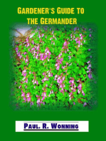 Gardener's Guide to Wall Germander