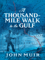 A Thousand-Mile Walk to the Gulf