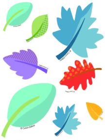 Nature Explorers Leaves