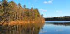 Did Thoreau Actually Live on Walden Pond?