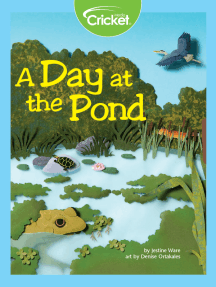 A Day at the Pond