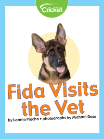 Fida Visits the Vet