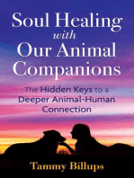 Soul Healing with Our Animal Companions