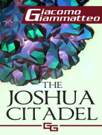 The Joshua Citadel, The Last Battle