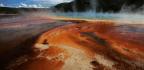 Yellowstone's Hot Springs Host a Bizarre Virus
