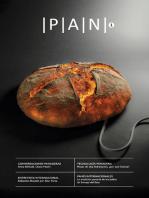 PAN 1
