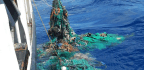 The Great Pacific Garbage Patch Counts 1.8 Trillion Pieces Of Trash, Mostly Plastic