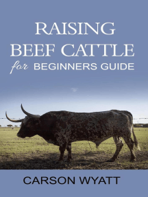 Raising Beef Cattle for Beginner's Guide: Homesteading Freedom